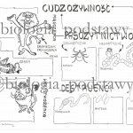 Klasa 5 – Sposoby oddychania organizmów – sketchnotka