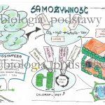 Klasa 5 – Samożywność – sketchnotka