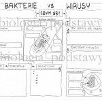Klasa 5 – Wirusy i bakterie – notatka graficzna