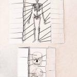 Klasa 7 Układy narządów człowieka