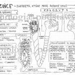 Klasa 6 – Parzydełkowce – karta pracy