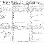 Klasa 6 – Ryby – przegląd i znaczenie – sketchnotka