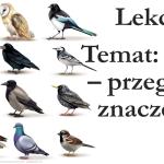 Słucham – ćwiczenia rozróżniania głosek cz. 2