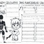 Klasa 7 – Skóra. Budowa i funkcje – karta pracy